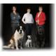 Gagnez 3 mois de nourriture Purina Pro Plan de croquettes de votre choix pour votre chien